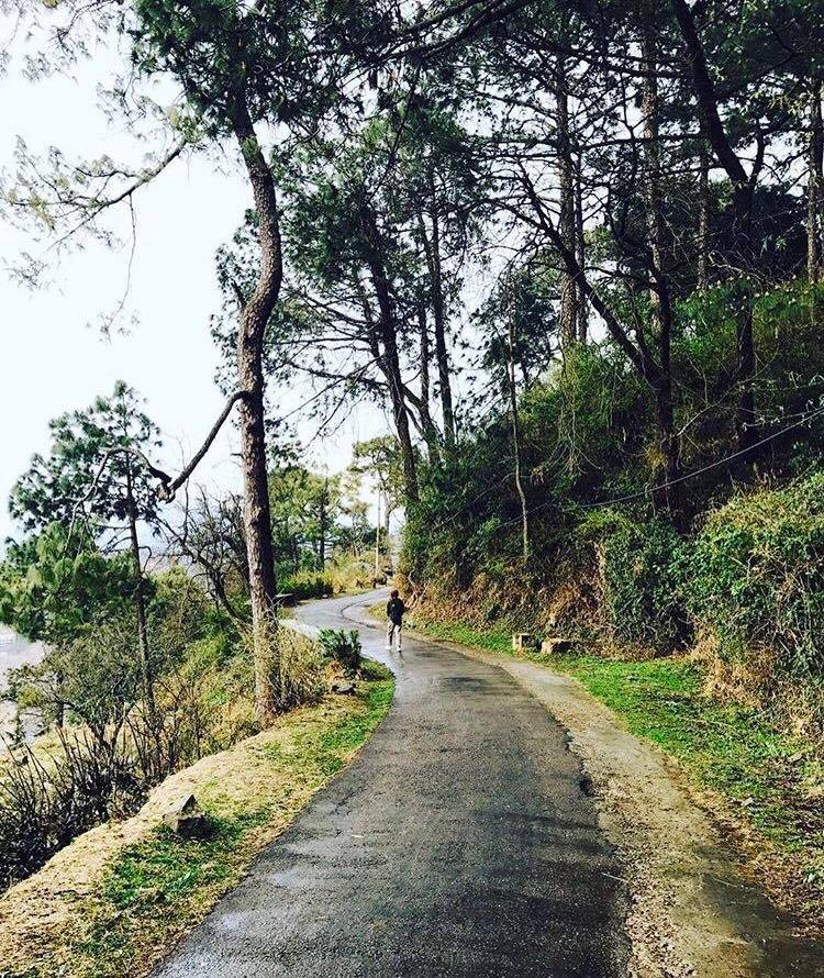 A Day in Kasauli: In Pictures