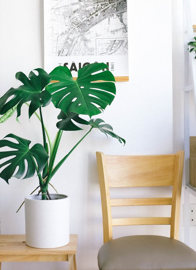 7 Questions to ask yourself while decluttering