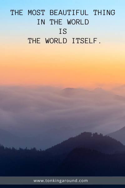 THE MOST BEAUTIFUL THING IN THE WORLD IS THE WORLD ITSELF.